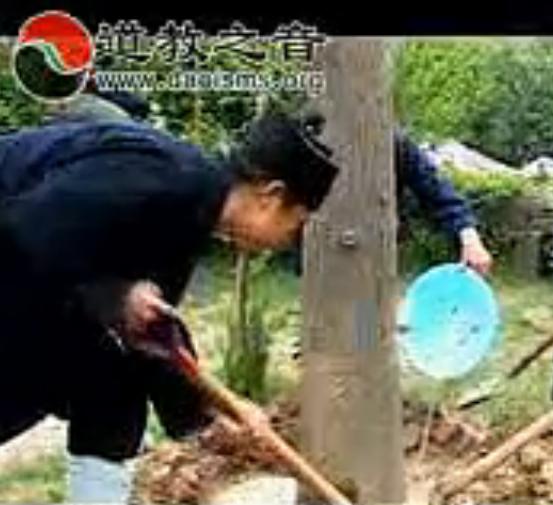 人间仙境八仙宫—绿色环保宫观的实践与探索