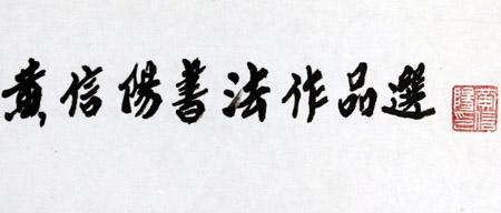 黄信阳道长书法作品赏析(图库)