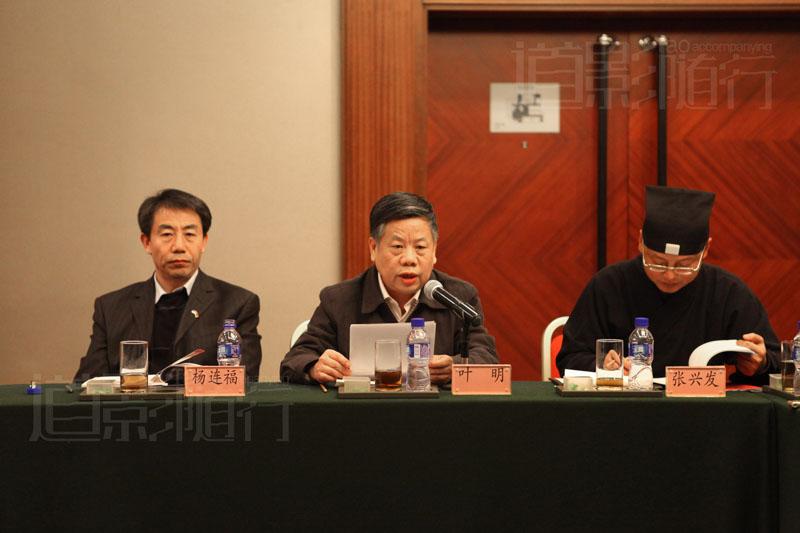 北京大学第一医院叶明教授在分论坛发言