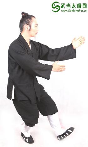 武当三丰太极拳28式 第七式 手挥琵琶 详解版