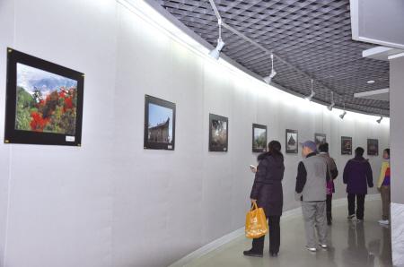 市民观看摄影作品