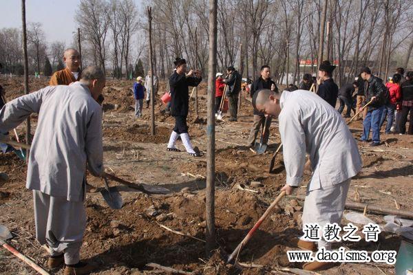 北京市宗教界开展义务植树活动
