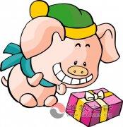 属猪的人2013年运程