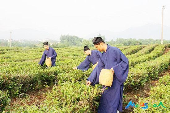 神仙也贵茶:道教与茶文化