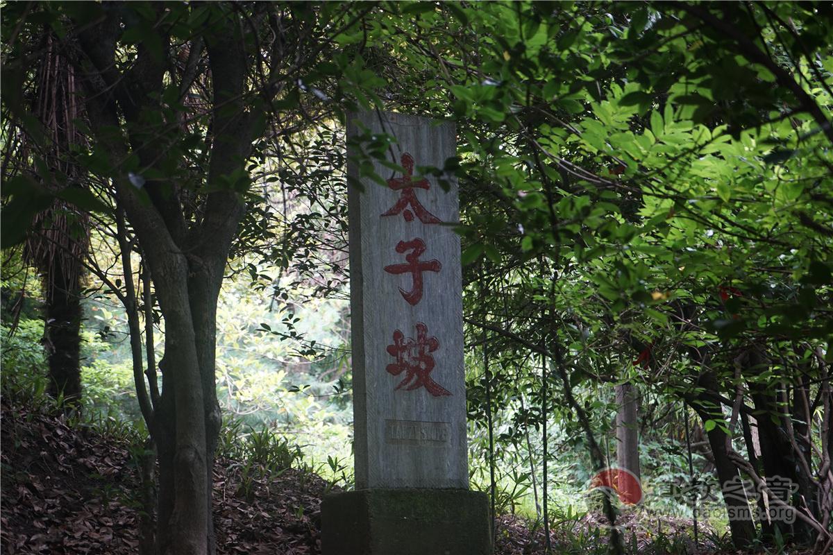 武当山太子坡