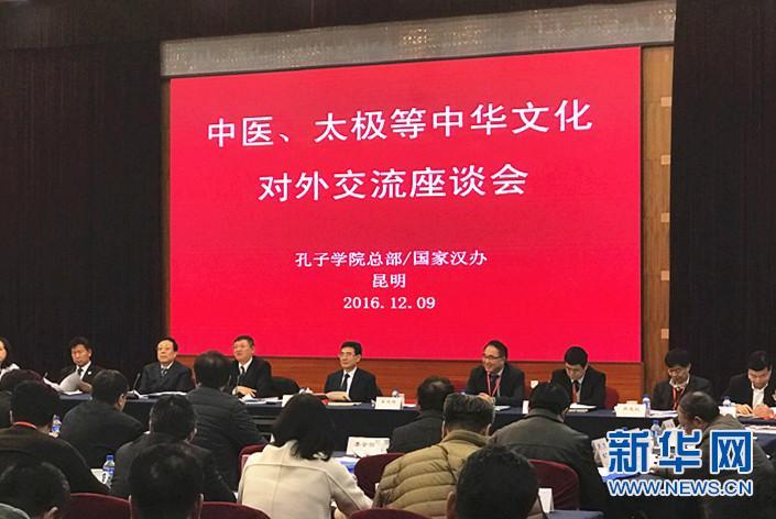 中医和太极等中华文化对外交流座谈会举行