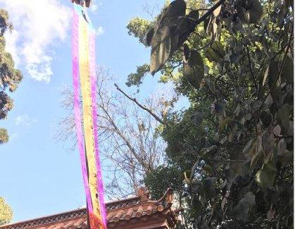 云南道教界庆祝昆明龙泉观开光酬神法会·扬幡科(视频)