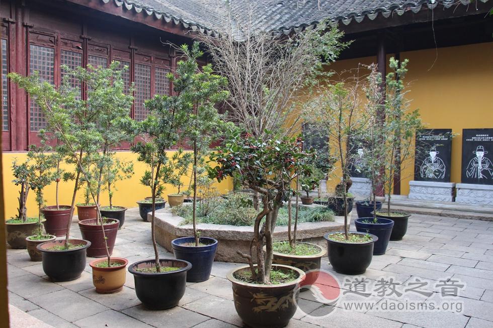 江苏苏州城隍庙一角