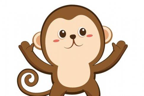 属猴人丁酉年运程破解