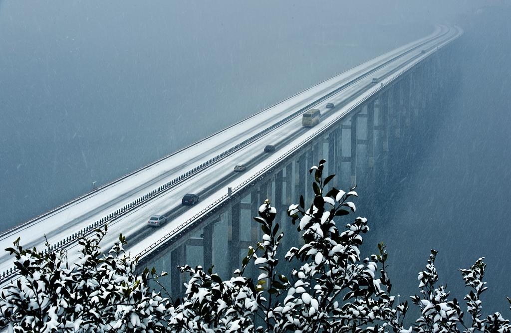 067优秀作品:风雪归途(摄影:李桢)