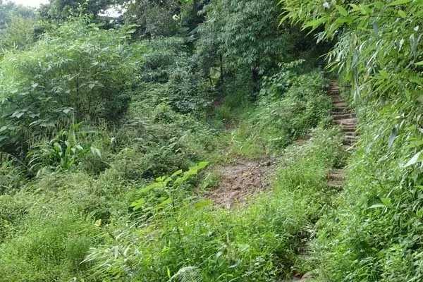 寻道路上:住在山顶守着破庙,两三个道士在修行