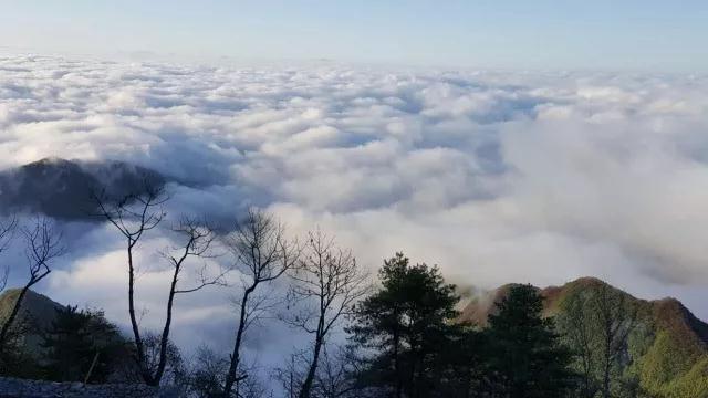 樊光春:天下终南,文化大道