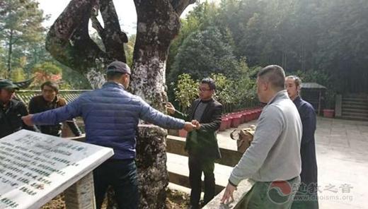 凤庆县各级领导对石洞峙百年山茶花古树保护工作进行中