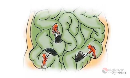 """""""辟谷""""饿死疾病的原罪——条件致病细菌4"""
