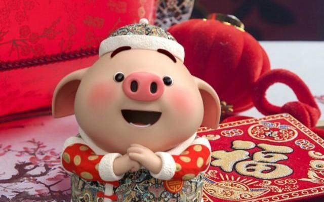 猪年话猪,说一说猪的生活观和猪性哲学