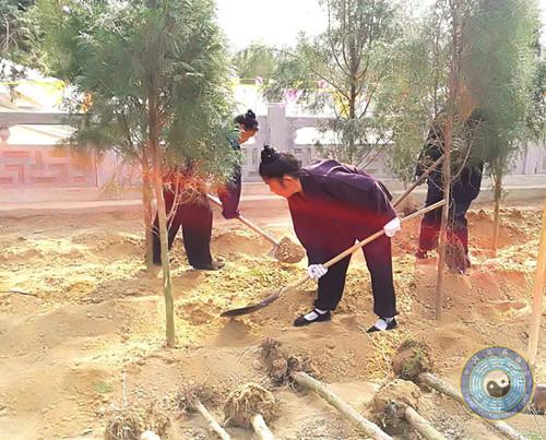 河北省固安县牛驼药王观开展植树造林活动