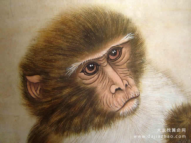 属猴人2021年运势及运程