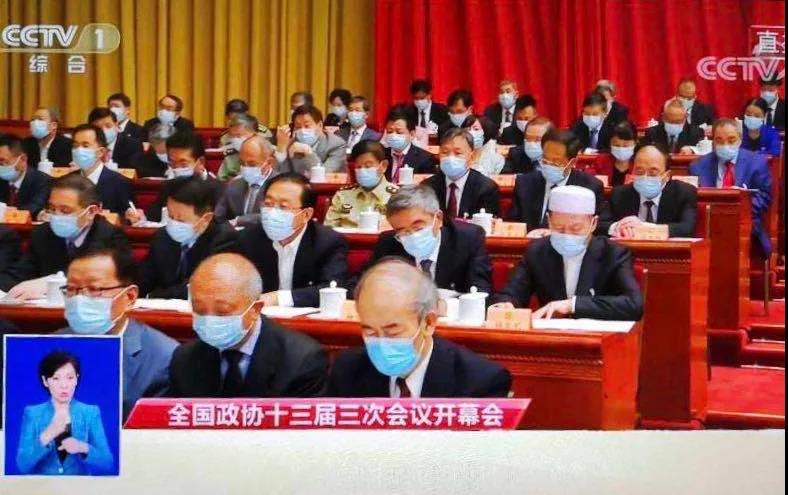 道教界委员在全国政协十三届三次会议小组会上积极发言
