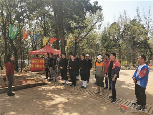 云南省道教协会开展护林活动